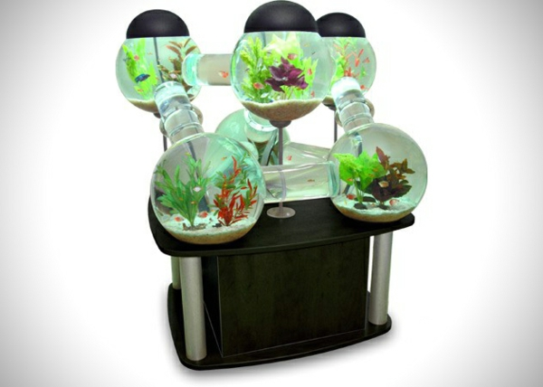 tolles labyrinth aquarium. Black Bedroom Furniture Sets. Home Design Ideas