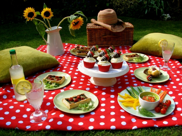 fingerfood ideen picknick essen picknick ideen