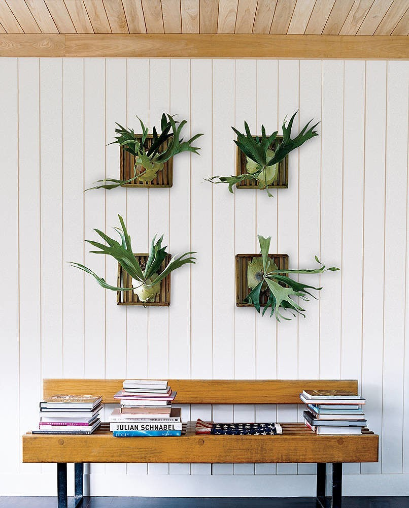 Home Decor Hanging Items