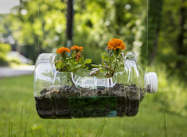 Recycled Plastic Planter with Geraniums: An old plastic jug recy